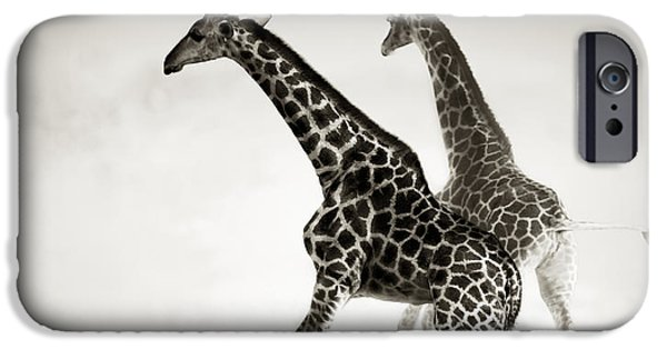 Giraffes iPhone Cases - Giraffes fleeing iPhone Case by Johan Swanepoel