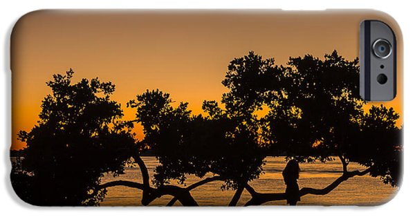 Mangrove iPhone Cases - Girl and Tree iPhone Case by Marvin Spates