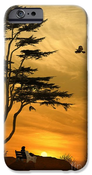 Hawk Art Print iPhone Cases - Girl On A Bench At Sunset iPhone Case by Tom York Images