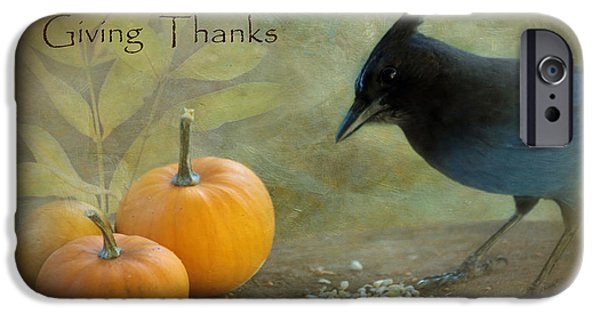 Gratitude iPhone Cases - Giving Thanks iPhone Case by Angie Vogel