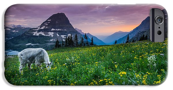 Mountain iPhone Cases - Glacier National Park 4 iPhone Case by Larry Marshall