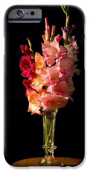 Gladioli iPhone Cases - Gladiolus Flower Bouqet iPhone Case by Keith Webber Jr