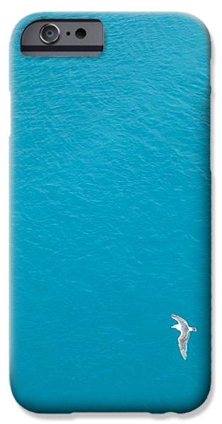Gliding Seagulls iPhone Case by Jacqueline Athmann