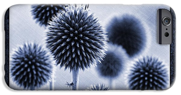 Thistle iPhone Cases - Globe Thistles iPhone Case by Tim Gainey