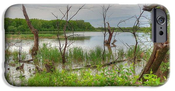 Nature Center Pond iPhone Cases - Gloomy Swamp Corner iPhone Case by Deborah Smolinske