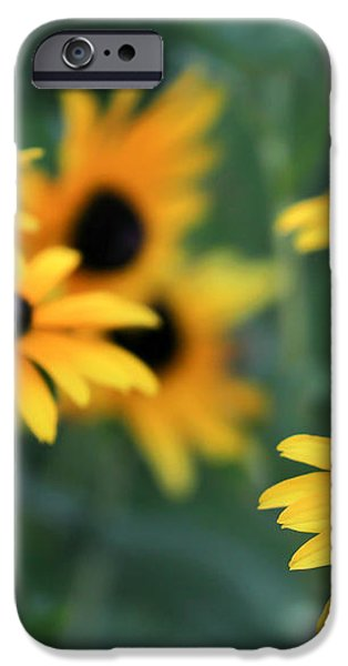 Glorious Garden of Black Eyed Susans iPhone Case by Sabrina L Ryan