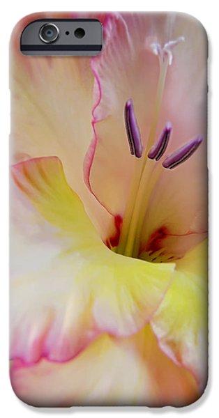 Glorious Gladiola Flower iPhone Case by Jennie Marie Schell