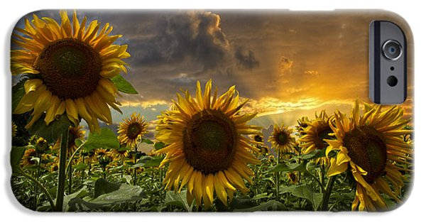 Austria iPhone Cases - Glory iPhone Case by Debra and Dave Vanderlaan