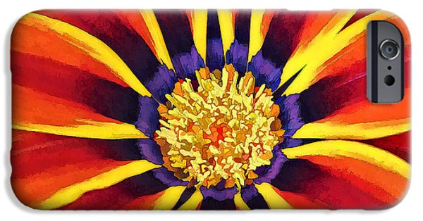 Close Up Floral iPhone Cases - Glowing Gazania iPhone Case by Bill Caldwell -        ABeautifulSky Photography