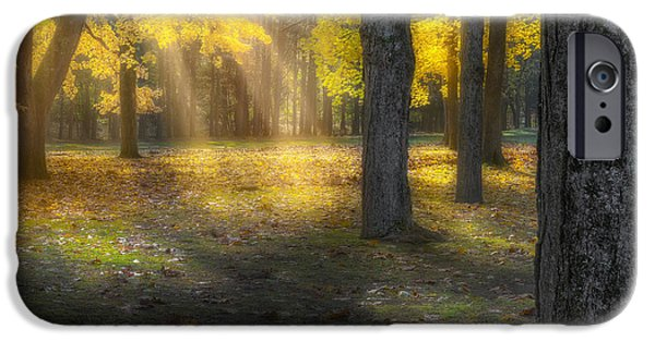 Litchfield County Landscape iPhone Cases - Glowing Maples Square iPhone Case by Bill  Wakeley