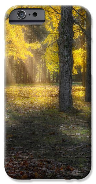 Glowing Maples Square iPhone Case by Bill  Wakeley