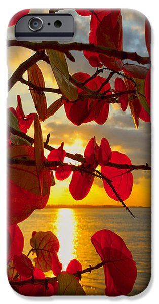 Ocean Sunset iPhone Cases - Glowing Red iPhone Case by Stephen Anderson
