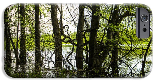 Mounds iPhone Cases - Gnarly Marsh at Cahokia Mounds Illinois iPhone Case by Deborah Smolinske