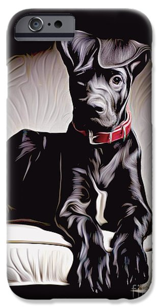 Chocolate Lab Digital Art iPhone Cases - Go for a walk? iPhone Case by Larry Espinoza