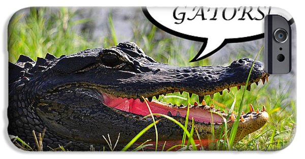 Florida Gators iPhone Cases - GO GATORS Greeting Card iPhone Case by Al Powell Photography USA