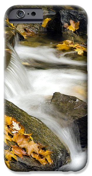 Going With The Flow iPhone Case by Christina Rollo