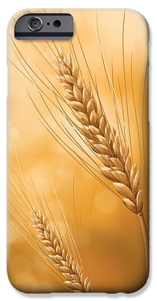 Sunset Posters iPhone Cases - Gold grain iPhone Case by Veronica Minozzi
