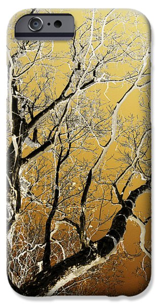 Rollo Digital Art iPhone Cases - Gold Tree Art iPhone Case by Christina Rollo