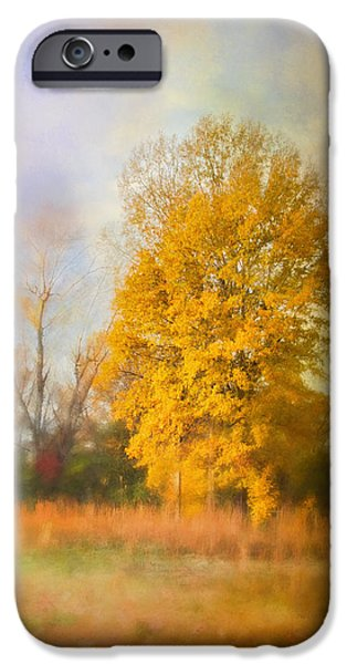 Fall Scenes iPhone Cases - Golden Autumn Splendor - Fall Landscape iPhone Case by Jai Johnson