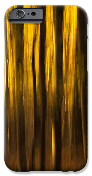Golden Blur iPhone Case by Anne Gilbert