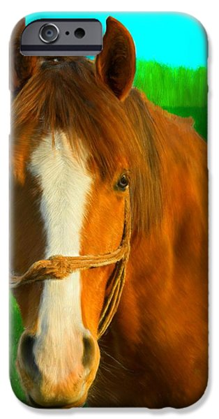 Snake iPhone Cases - Golden Brown Horse iPhone Case by Bruce Nutting