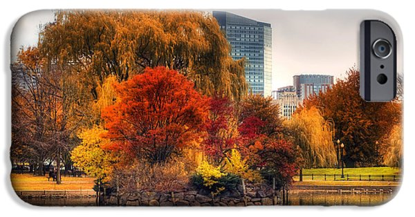 Massachusetts Autumn Scenes iPhone Cases - Golden Common iPhone Case by Joann Vitali