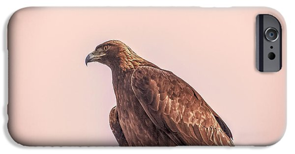 Resilience iPhone Cases - Golden Eagle At Dusk iPhone Case by Janice Rae Pariza