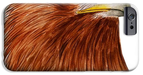 Eagle iPhone Cases - Golden Eagle iPhone Case by Ele Grafton