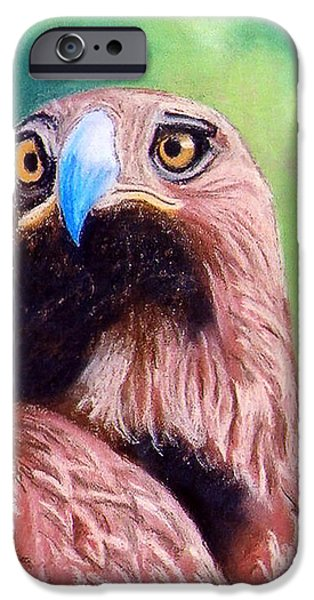 Eagle Pastels iPhone Cases - Golden Eagle iPhone Case by Stephen Brooks