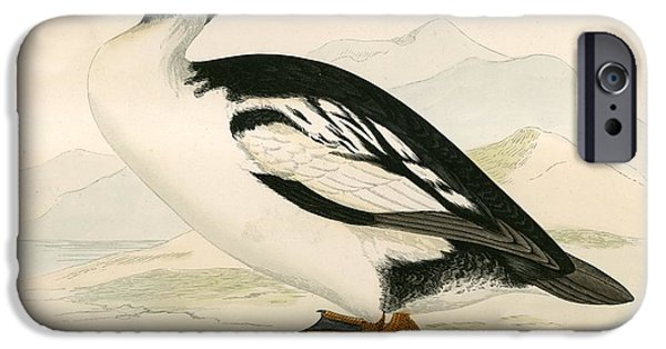 Hunting Bird iPhone Cases - Golden Eye iPhone Case by Beverley R. Morris