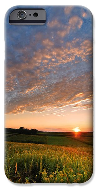 Skies iPhone Cases - Golden fields iPhone Case by Davorin Mance