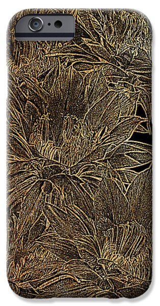 Bloosom iPhone Cases - Golden Flowers  iPhone Case by Phyllis Denton