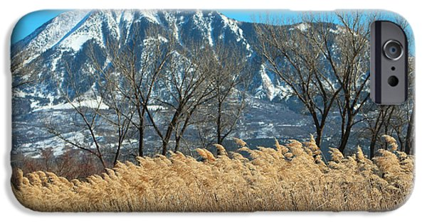 West Fork iPhone Cases - Golden Grain Of Home CO iPhone Case by Dale Jackson