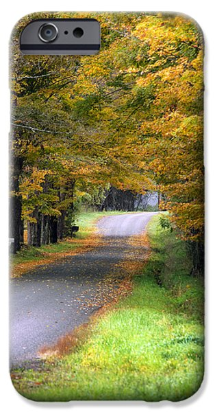 Fall Scenes iPhone Cases - Golden Journey Down Autumn Roads iPhone Case by Christina Rollo
