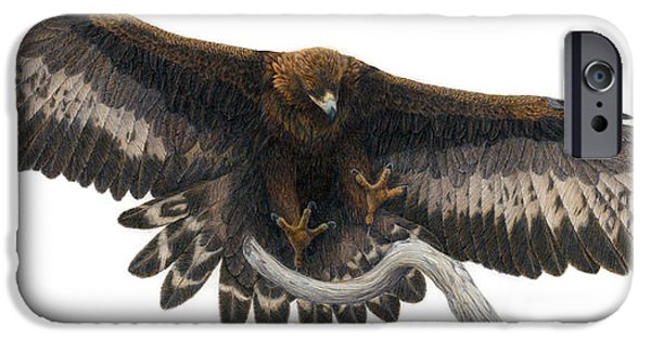 Colored Pencils iPhone Cases - Golden Landing iPhone Case by Pat Erickson