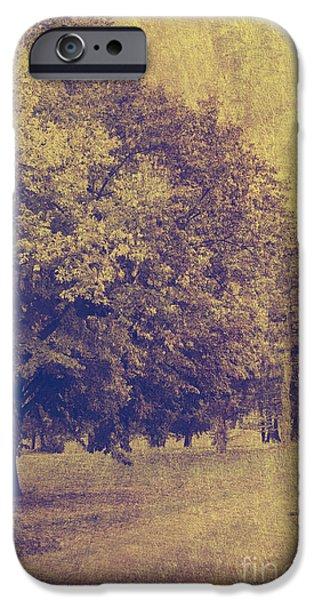 Autumn Landscape Mixed Media iPhone Cases - Golden landscape iPhone Case by Jelena Jovanovic