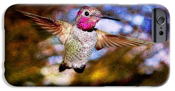 Duchess iPhone Cases - Golden Light Hummingbird Flight iPhone Case by Jeanette Brown