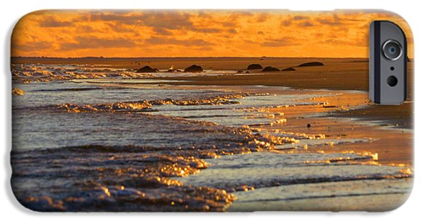 East Dennis Ma iPhone Cases - Golden Morning Light iPhone Case by Dianne Cowen