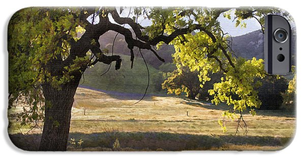 Landscapes Digital Art iPhone Cases - Golden Oaks iPhone Case by Sharon Foster