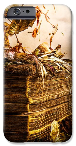 Bible Photographs iPhone Cases - Golden Pages Falling Flowers iPhone Case by Bob Orsillo