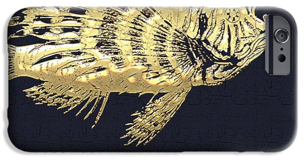 Miracle iPhone Cases - Golden Parrot Fish on Charcoal Black iPhone Case by Serge Averbukh