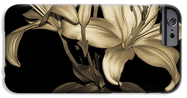 Day Lilies iPhone Cases - Golden Petals iPhone Case by Carolyn Marshall