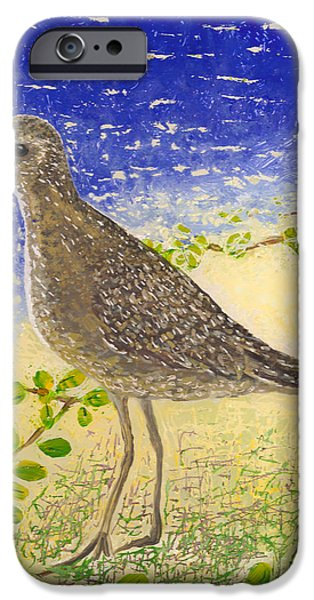 Sheets Glass iPhone Cases - Golden Plover iPhone Case by Anna Skaradzinska