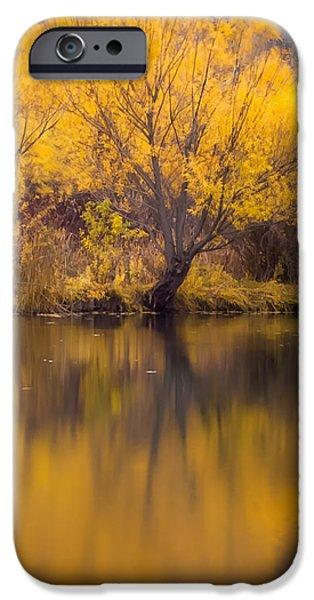 Golden Pond iPhone Case by Steven Milner