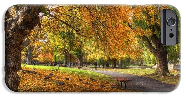 Fall Scenes iPhone Cases - Golden Public Garden iPhone Case by Joann Vitali