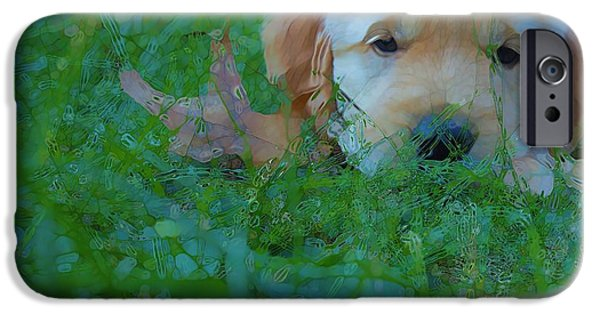 Cute Puppy iPhone Cases - Golden Retriever Abstract Puppy Love iPhone Case by Dan Sproul