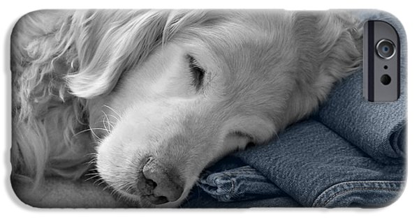 Levi iPhone Cases - Golden Retriever Dog Forever on Blue Jeans Monochrome iPhone Case by Jennie Marie Schell