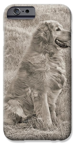 Golden Retriever Dog Sepia iPhone Case by Jennie Marie Schell