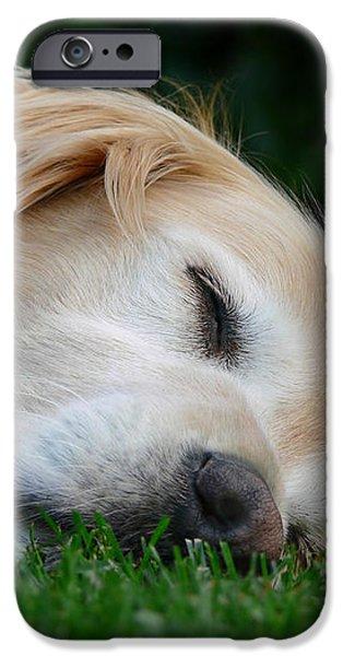 Golden Retriever Dog Sweet Dreams iPhone Case by Jennie Marie Schell
