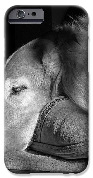 Golden Retriever dog with Master's Slipper Black and White iPhone Case by Jennie Marie Schell